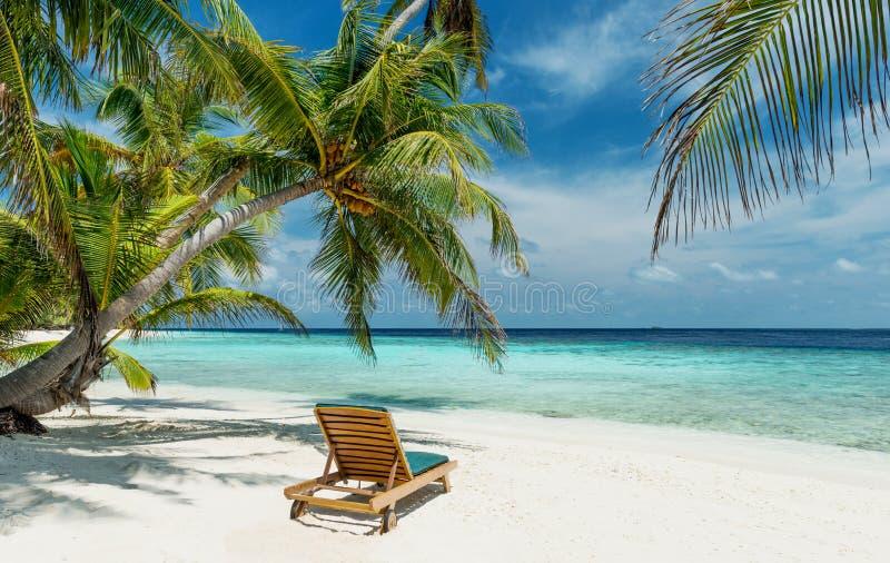 在一个未触动过的热带海滩的Deckchair 免版税库存图片