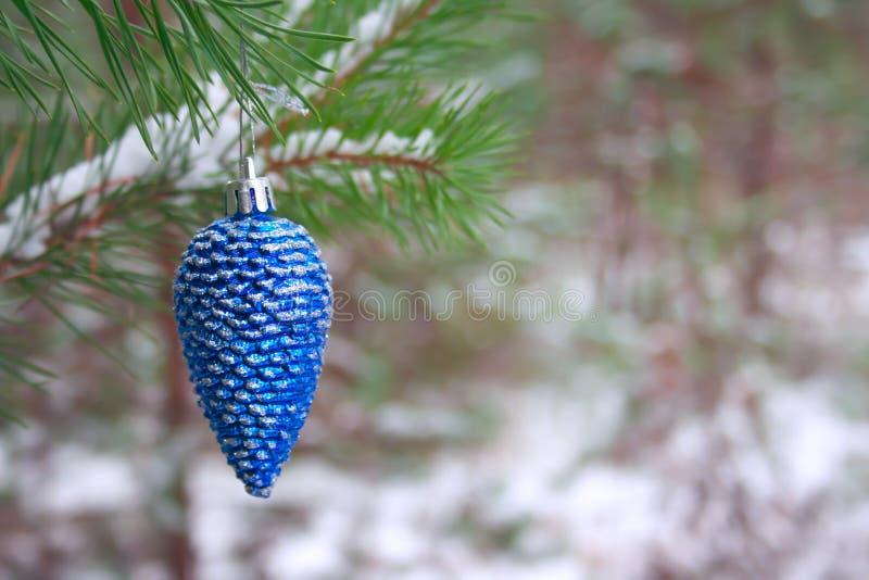 在一个杉木分支的闪耀的蓝色圣诞树玩具锥体在冬天多雪的森林里 免版税库存照片