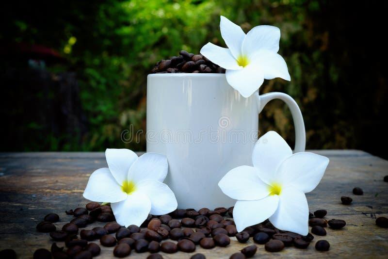 在一个杯子的咖啡豆在木桌上 免版税库存图片