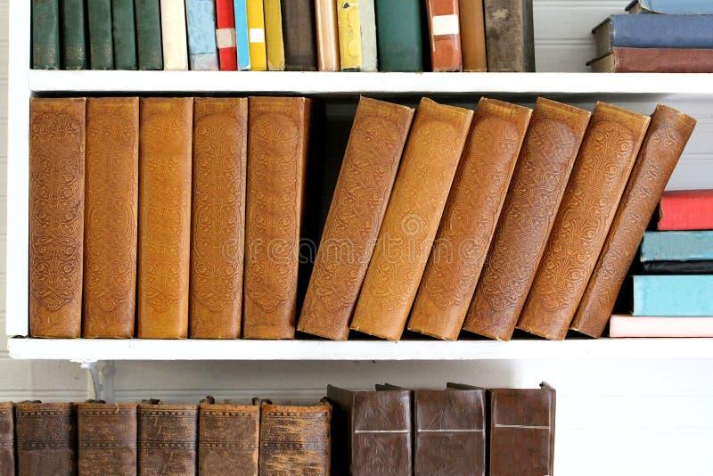 在一个架子的书没有标题 库存图片