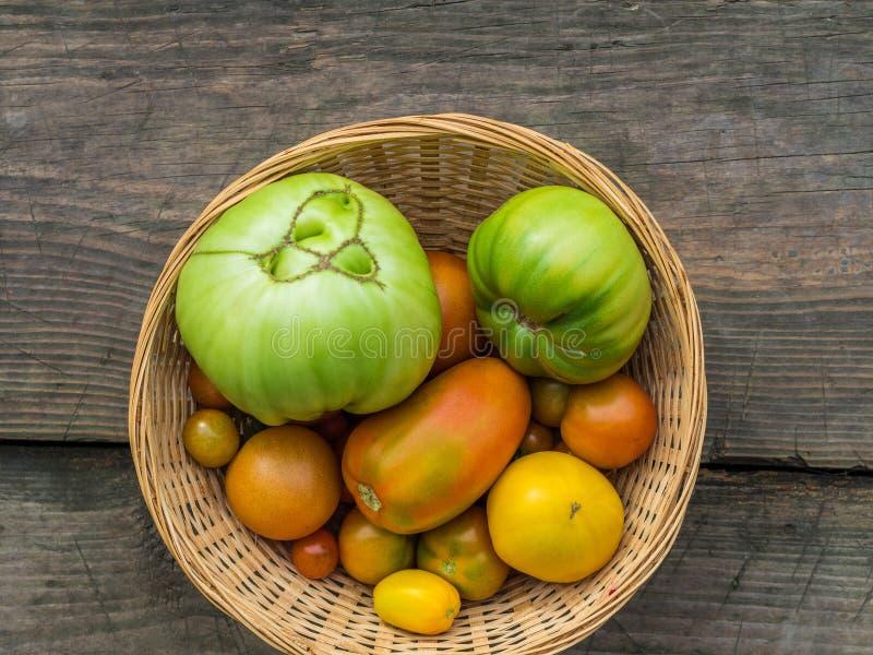 在一个柳条筐的各种各样的绿色,黄色,红色,大,小,丑恶的庭院蕃茄在木背景 r 图库摄影