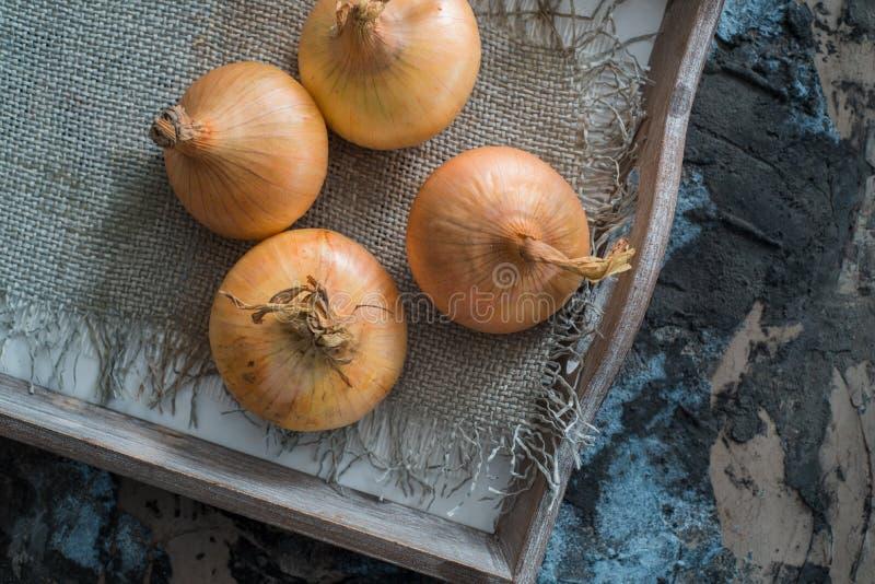 在一个柳条筐的大葱收获 电灯泡葱在维生素,有用的春天上是富有的 在木背景的葱果皮 大  免版税库存图片