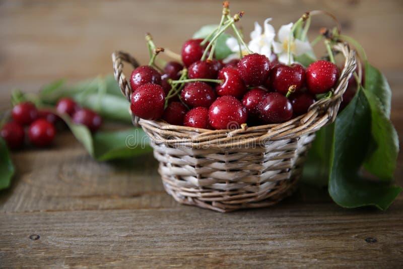 在一个柳条筐的新鲜的有机樱桃与叶子和白花在木土气背景 r ?? 库存照片