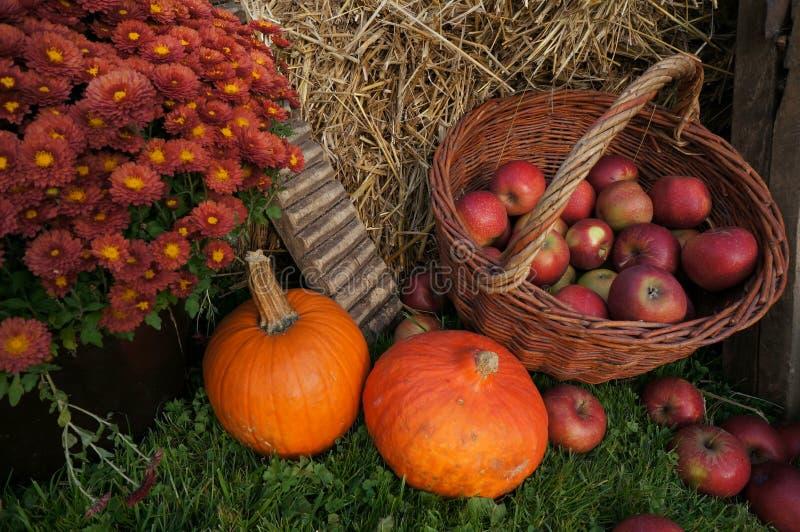 在一个柳条筐的秋天装饰,红色和绿色苹果在秸杆、南瓜、南瓜、石南花花和菊花花 图库摄影