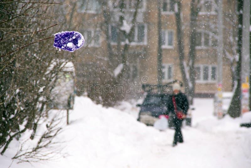 在一个树枝的丢失的孩子的手套在大雪期间在城市 库存照片