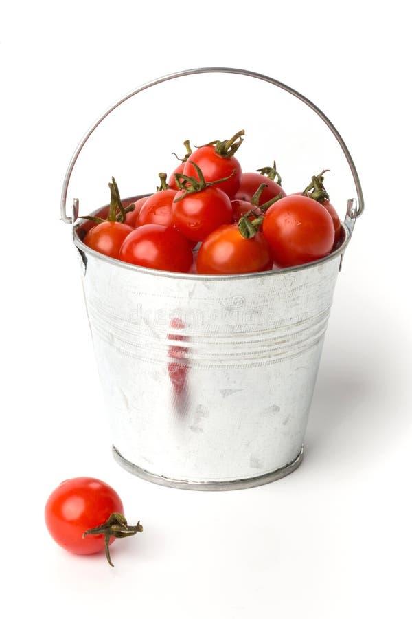 在一个桶的新鲜的蕃茄在白色背景 免版税图库摄影