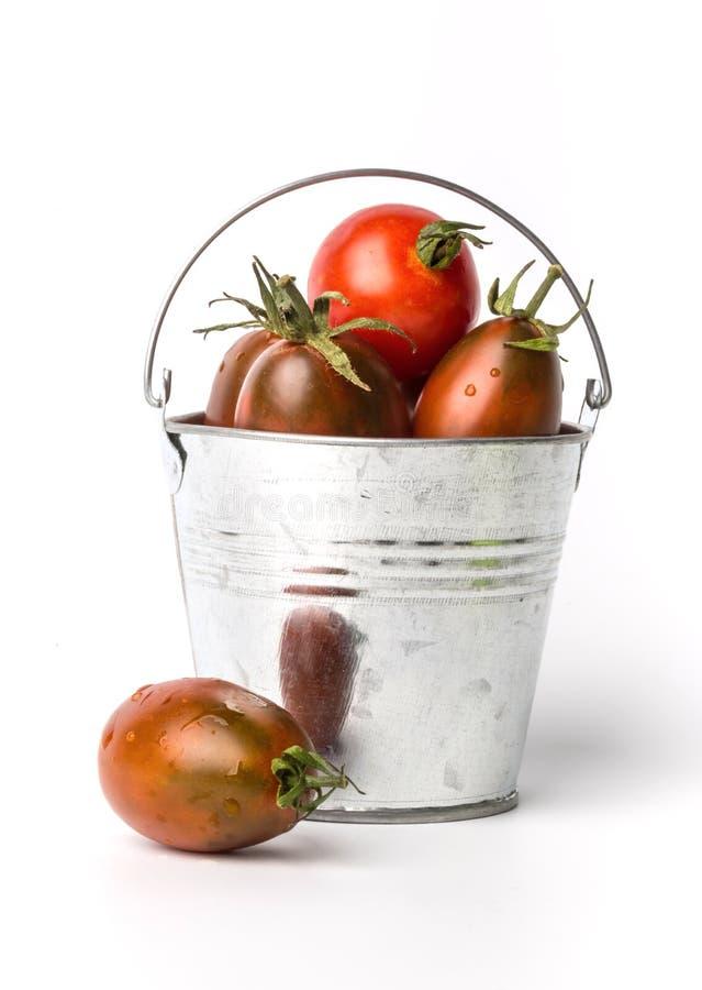 在一个桶的新鲜的蕃茄在白色背景 库存图片