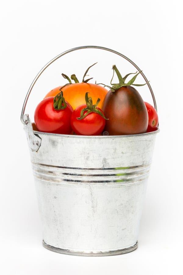 在一个桶的新鲜的蕃茄在白色背景 免版税库存图片