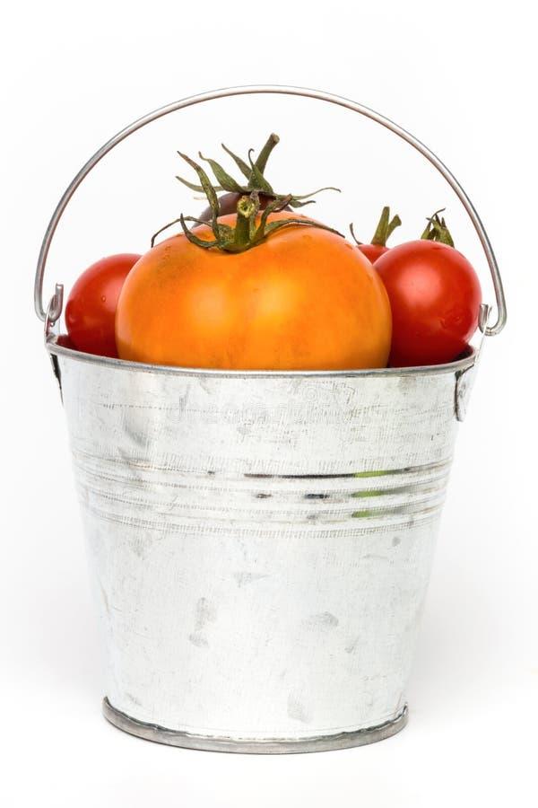 在一个桶的新鲜的蕃茄在白色背景 免版税库存照片