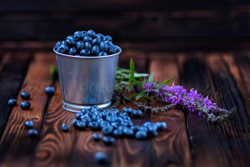 在一个桶的蓝莓在黑暗的木背景 领域花 免版税库存照片