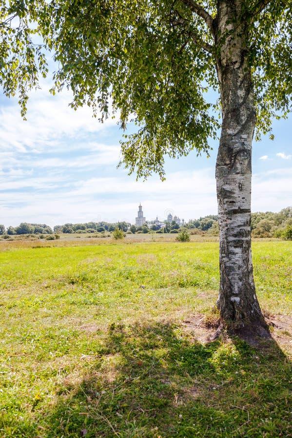在一个正统修道院的背景的偏僻的桦树 免版税库存图片