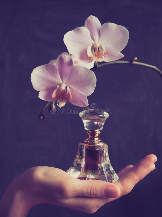 在一个水晶瓶的精华阿拉伯香水 玫瑰油Oud油 免版税库存图片