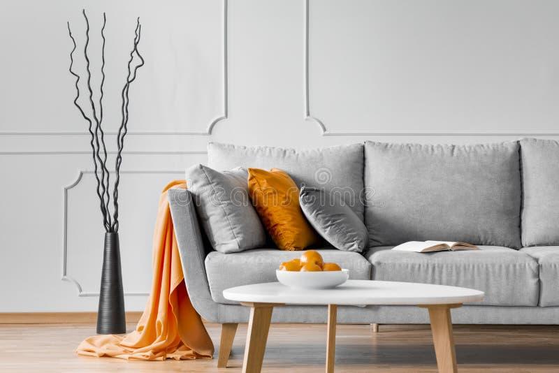 在一个沙发旁边的分支有橙色毯子和枕头的在客厅内部 r 库存照片