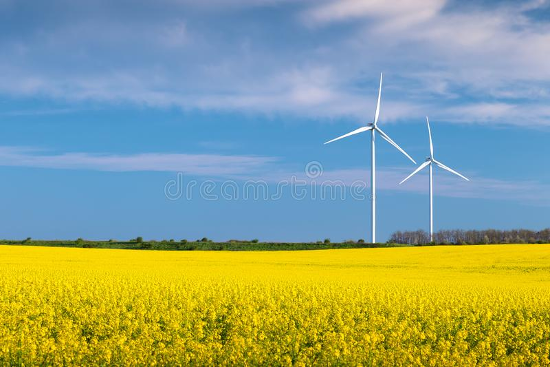 在一个油菜籽领域的两台风轮机与天空蔚蓝和云彩 图库摄影