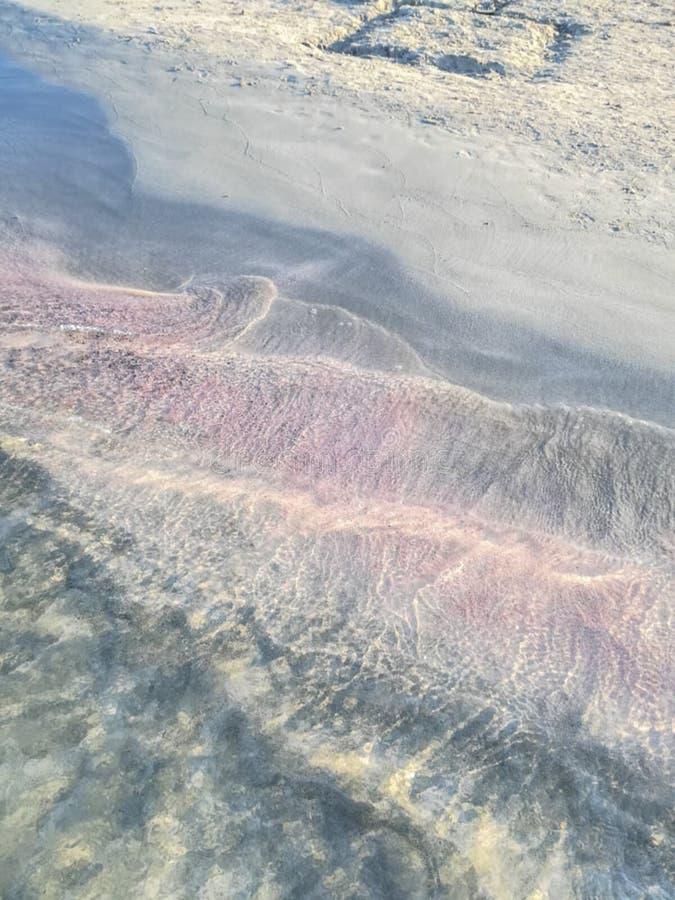在一个海滩的镇静平静的波浪与桃红色和黑沙子 库存照片