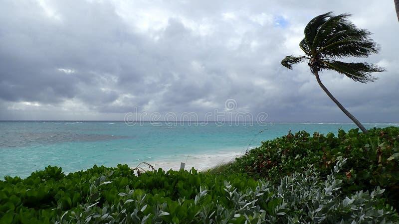 在一个海滩的风暴日在Hopetown Abacos巴哈马 库存照片