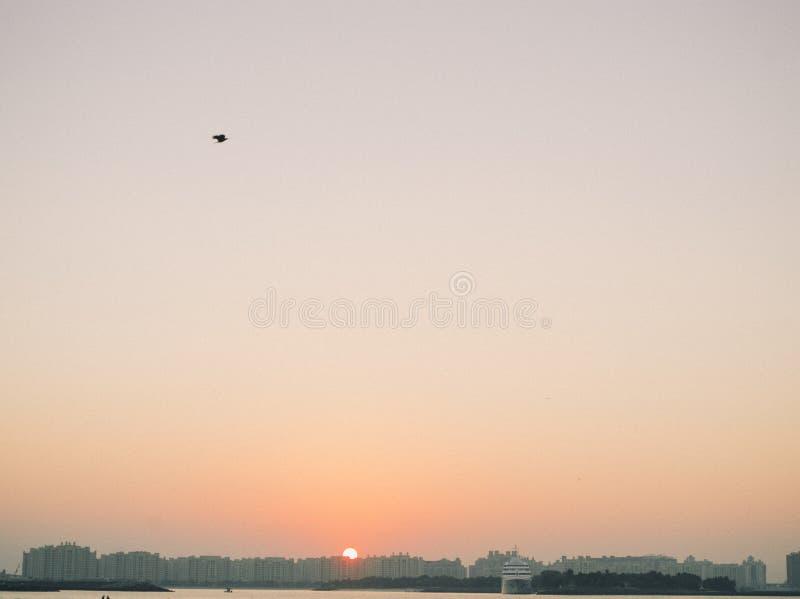 在一个海滩的日落在迪拜 库存照片