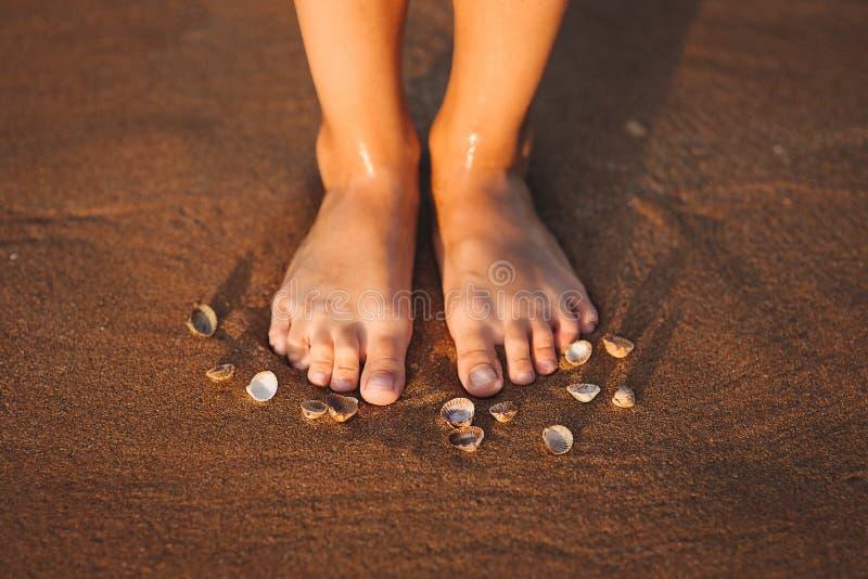 在一个海滩的脚与海扇壳 免版税库存图片
