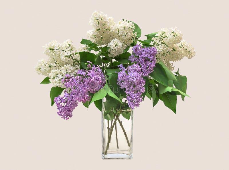 在一个清楚的玻璃花瓶的淡紫色花束 免版税库存图片
