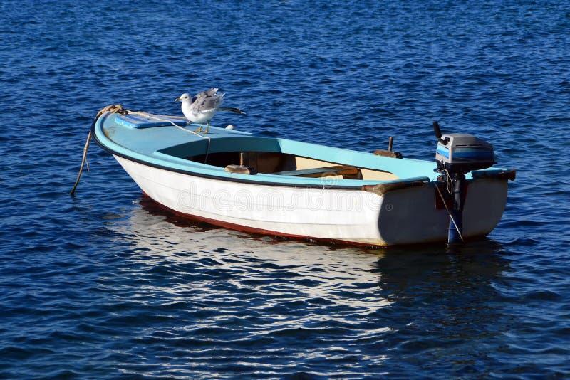 在一个渔船的海鸥在一个明亮的夏日 免版税库存图片