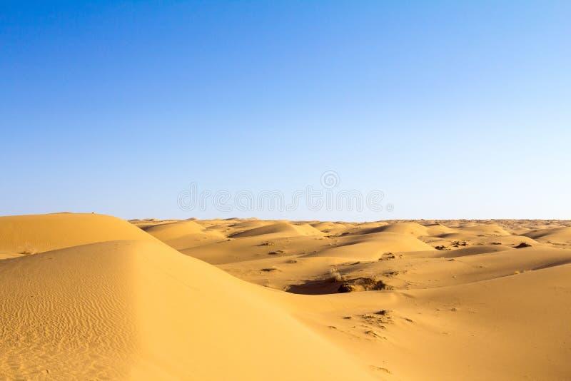 在一个温暖的夏天下午期间,在Maranjab的沙丘在喀山附近离开,伊朗,在日落 库存照片