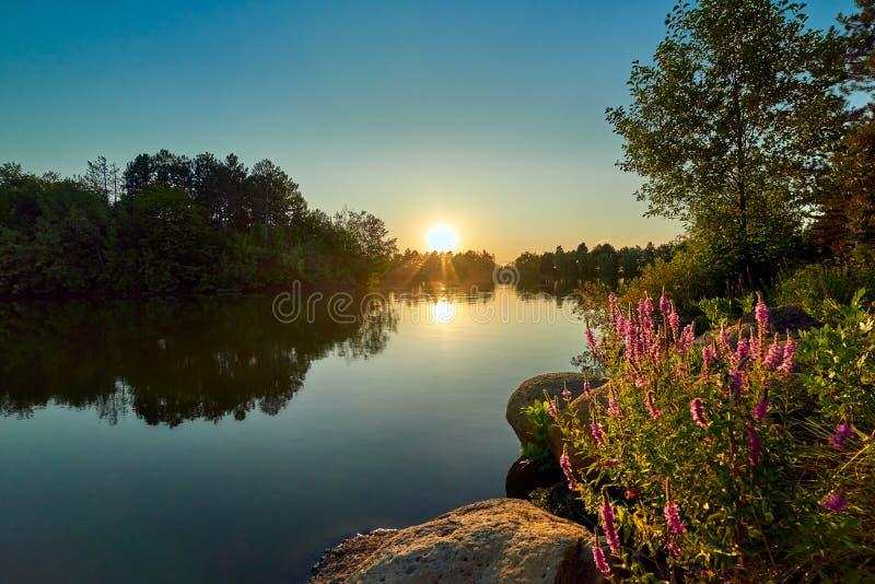 在一个湖的日落有大海和天空的,在前景淡紫色和圆的石头 免版税库存照片