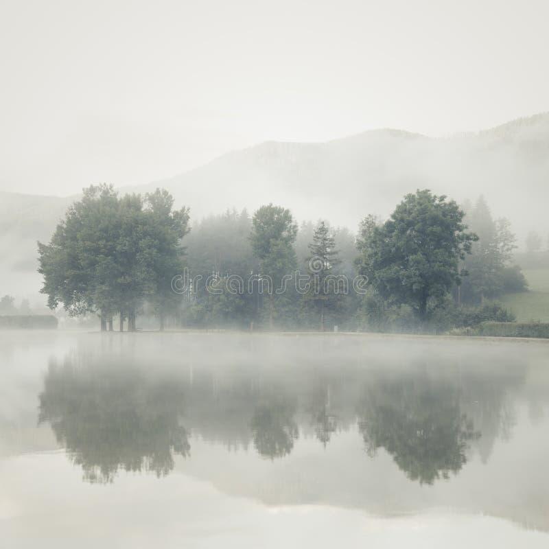 在一个湖的薄雾在与树和山的黎明在反射了 免版税库存图片