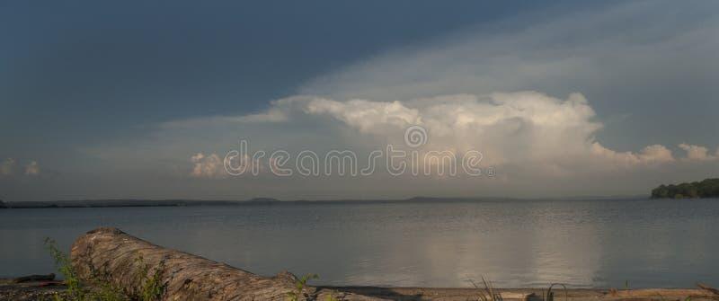 在一个湖的风雨如磐的天空有在岸的漂流木头的 库存照片