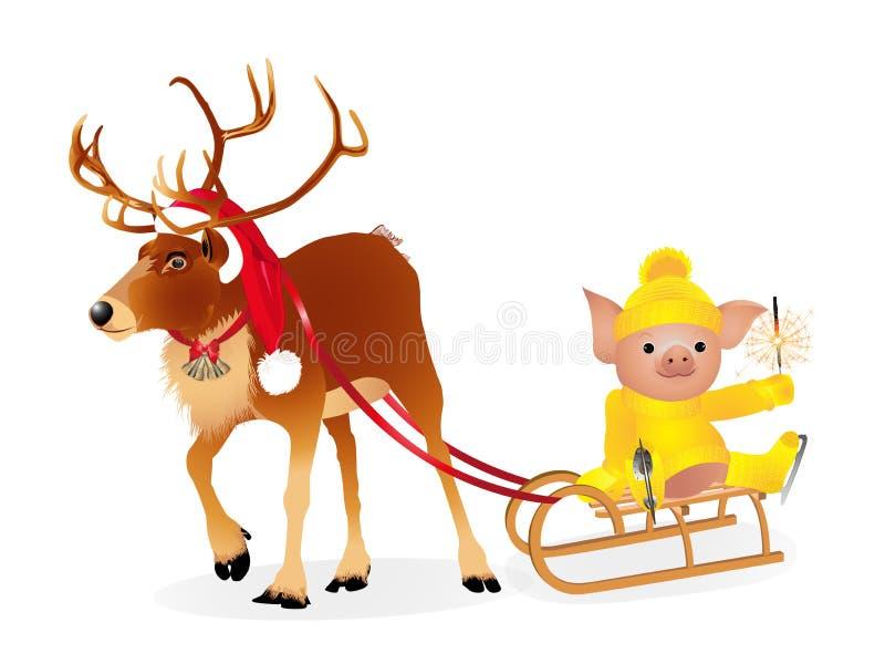 在一个滑稽的圣诞老人` s红色盖帽的鹿 在毛线衣的猪在冰鞋 2019年猪的农历新年 也corel凹道例证向量 皇族释放例证
