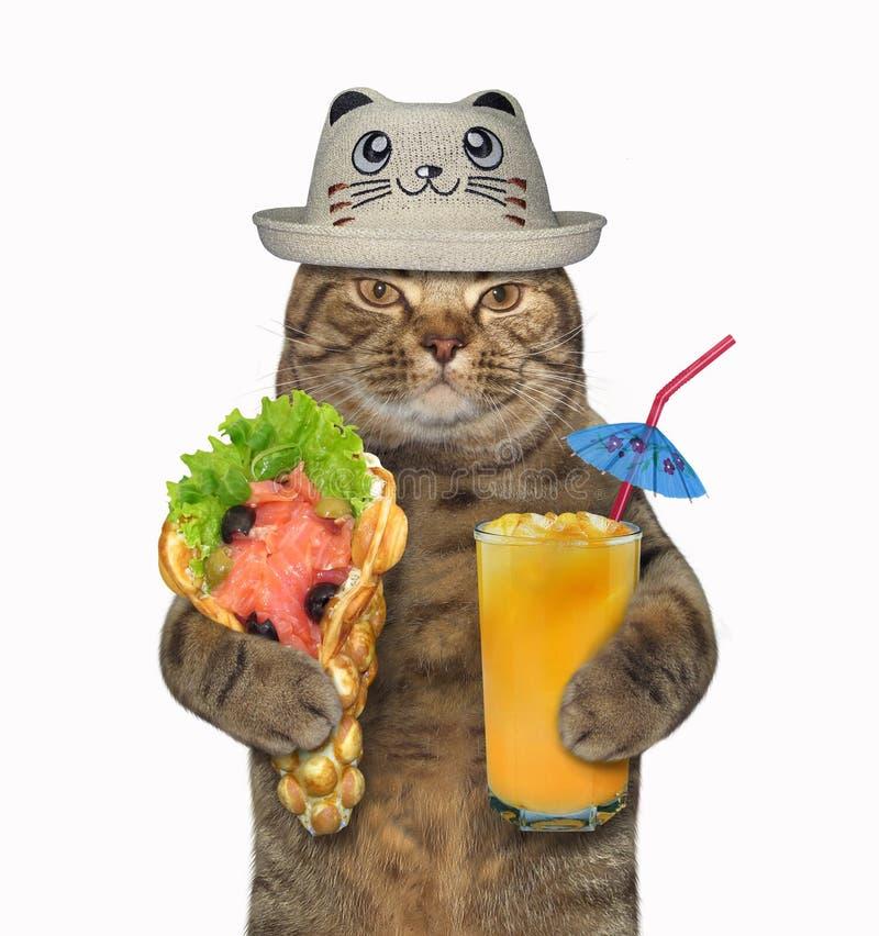 在一个滑稽的帽子的猫用软的奶蛋烘饼 免版税库存照片