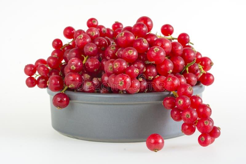 在一个灰色碗的红浆果在白色 库存图片