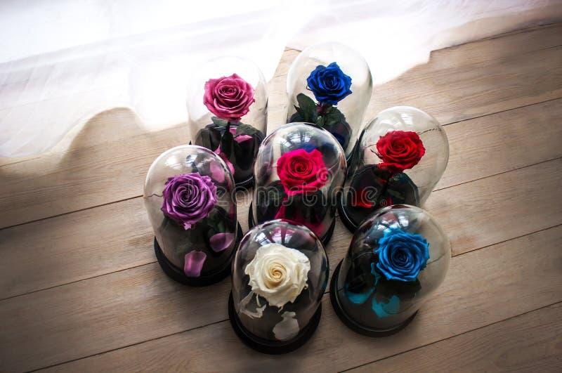 在一个烧瓶的玫瑰在玻璃下 作为一件礼物为假日 免版税库存照片