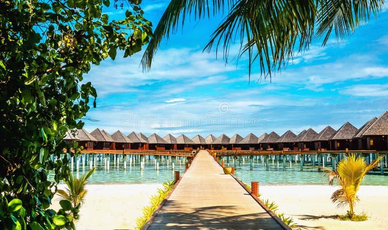 在一个热带海岛上的水平房,马尔代夫 免版税库存照片