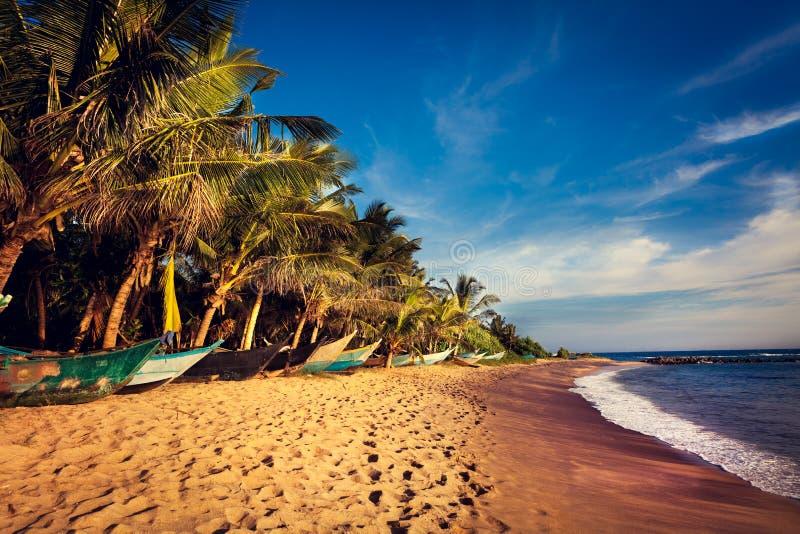在一个热带海滩, Mirissa,斯里南卡的小船 免版税库存照片