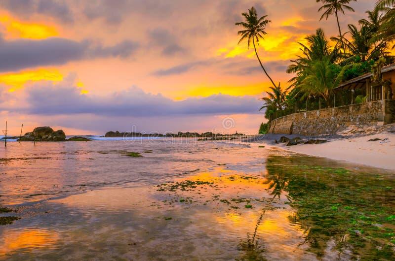 在一个热带海滩的日落在斯里兰卡 图库摄影