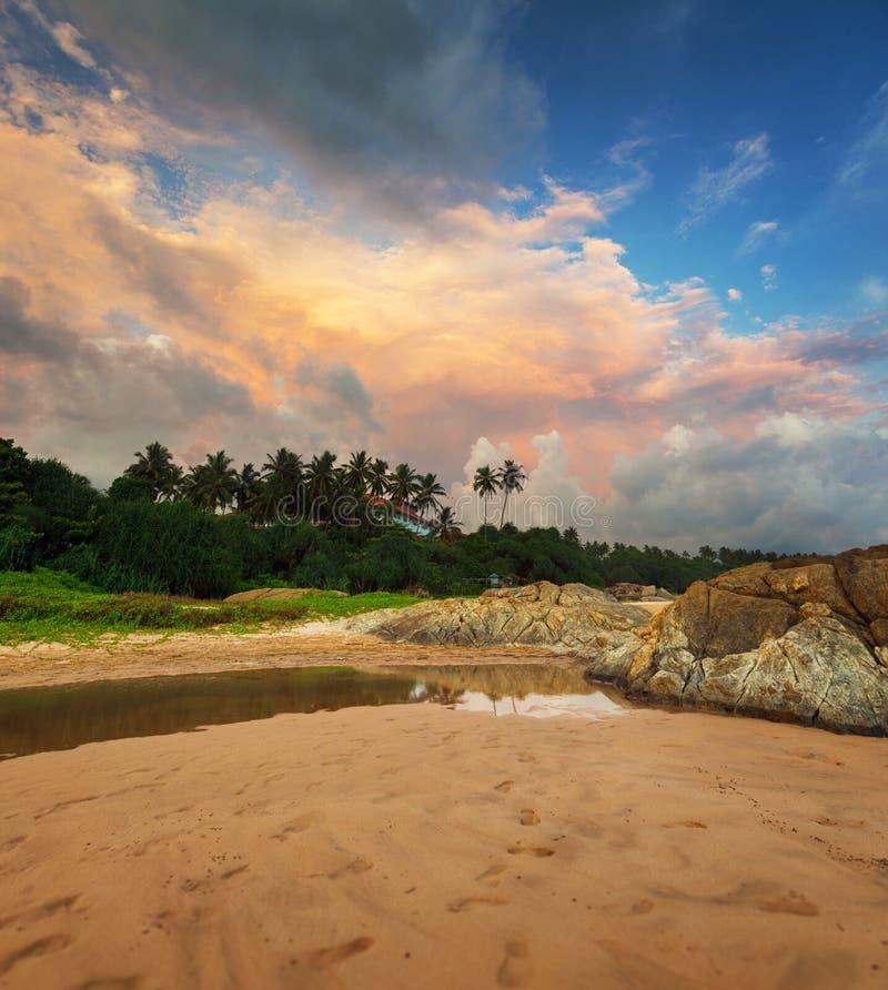 在一个热带海滩的美丽的晚上天空。斯里兰卡 免版税库存照片
