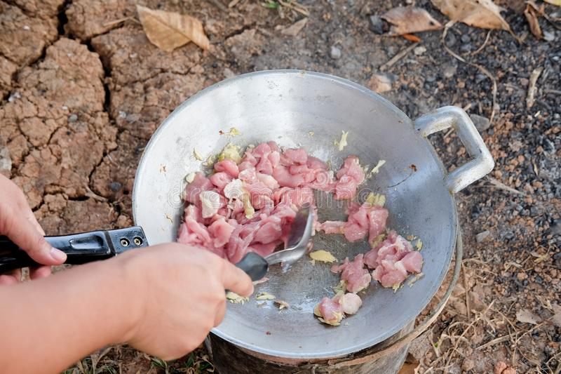 在一个煎锅的油煎的猪肉有煤气炉野餐的 库存图片