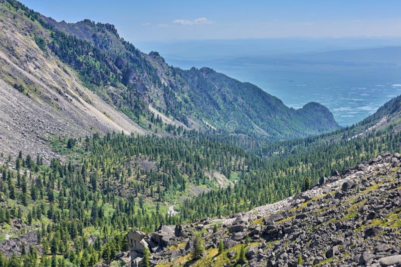 在一个狭窄的谷的山taiga 库存图片