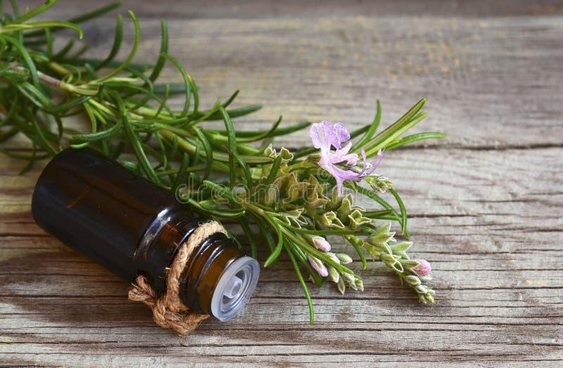 在一个玻璃吸管瓶的罗斯玛丽精油用在老木桌上的新鲜的绿色迷迭香草本温泉、芳香疗法和bodyc的 图库摄影