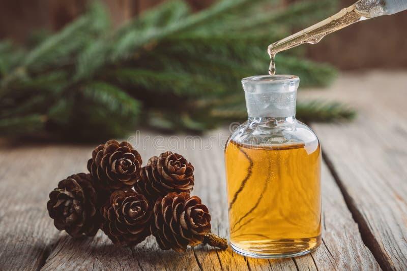 在一个玻璃吸管瓶,杉木从玻璃吸管的精油水滴下落的冷杉芳香油  免版税库存照片