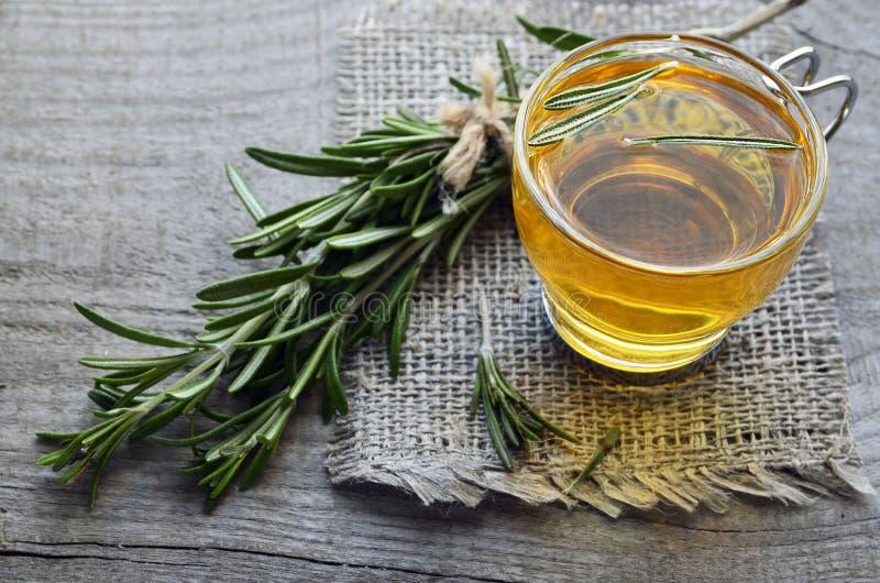 在一个玻璃杯子的罗斯玛丽清凉茶用在土气木背景的新鲜的绿色迷迭香草本 免版税库存图片