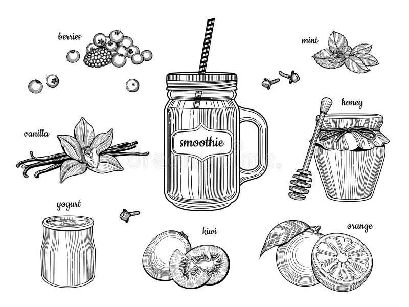 在一个玻璃瓶子的圆滑的人 各自的成份 莓果,香草,酸奶,猕猴桃,桔子,蜂蜜,薄菏 库存例证