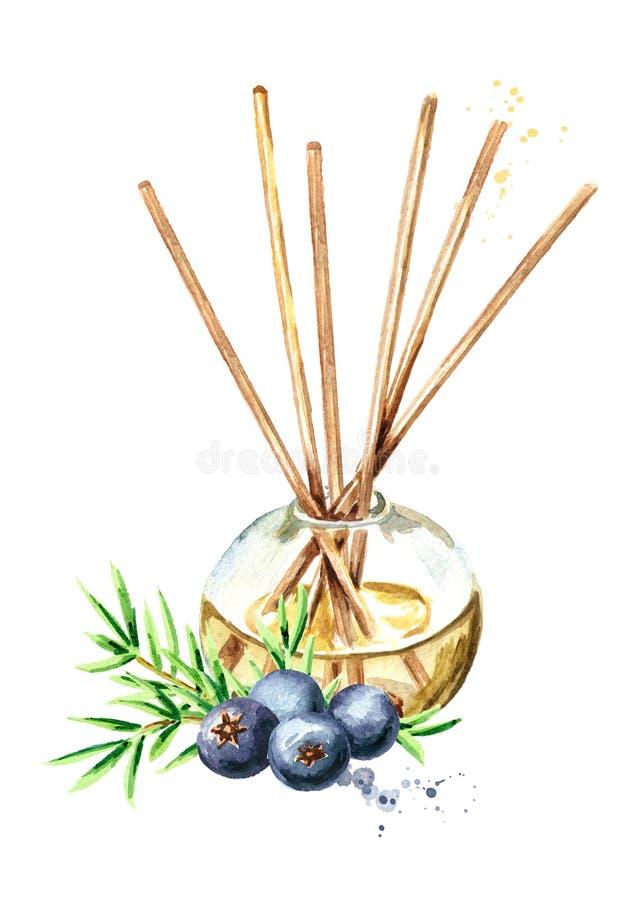 在一个玻璃瓶的杜松液体用棍子和莓果和分支 清凉剂 r 皇族释放例证