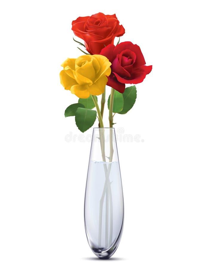 在一个玻璃花瓶的色的玫瑰,被隔绝 皇族释放例证
