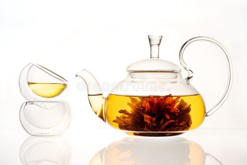 在一个玻璃茶壶的酿造的茶花 免版税库存图片