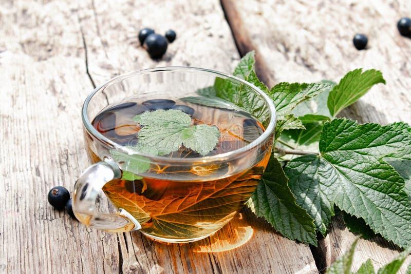 在一个玻璃透明杯子的无核小葡萄干叶子清凉茶在绿色无核小葡萄干附近叶子和莓果的一张木桌上  免版税库存照片