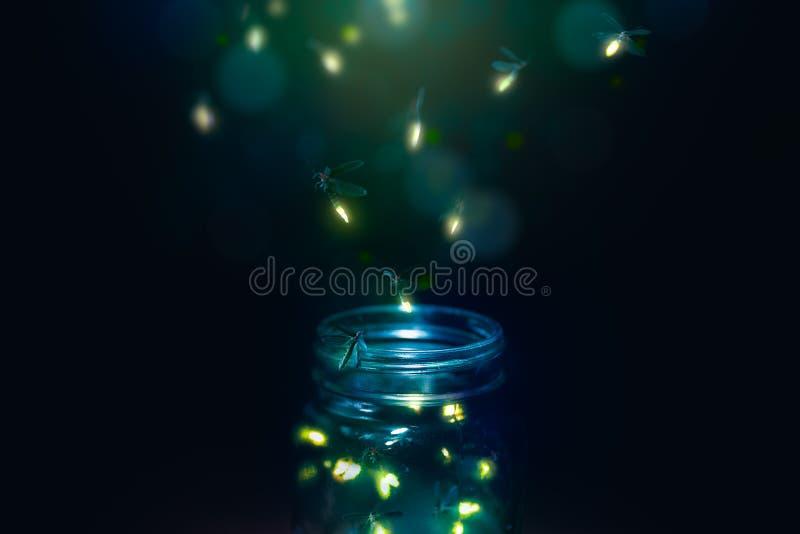 在一个瓶子的萤火虫在黑暗的背景 图库摄影
