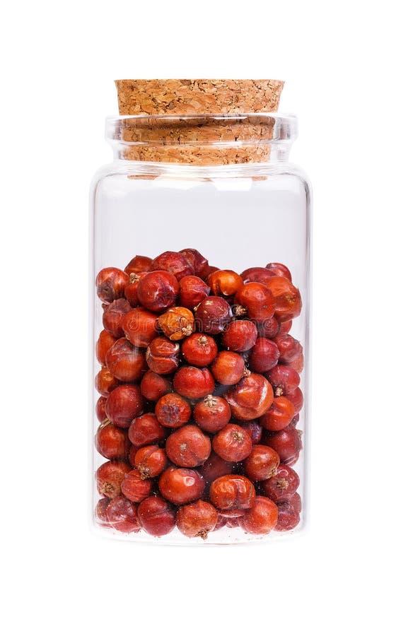 在一个瓶的干燥杜松种子有医学用途的黄柏停止者的 库存照片