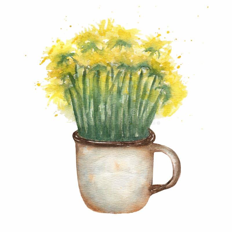 在一个生锈的金属杯子的黄色蒲公英 水彩手拉的夏天构成 黄色狂放的花束花例证 库存例证