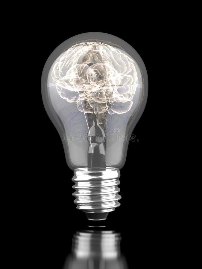 在一个电灯泡里面的脑子 库存照片